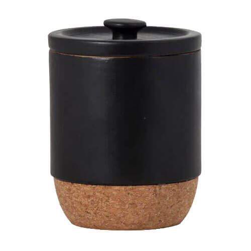 Aurora Carbon Canister